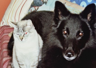 Sheila y Max